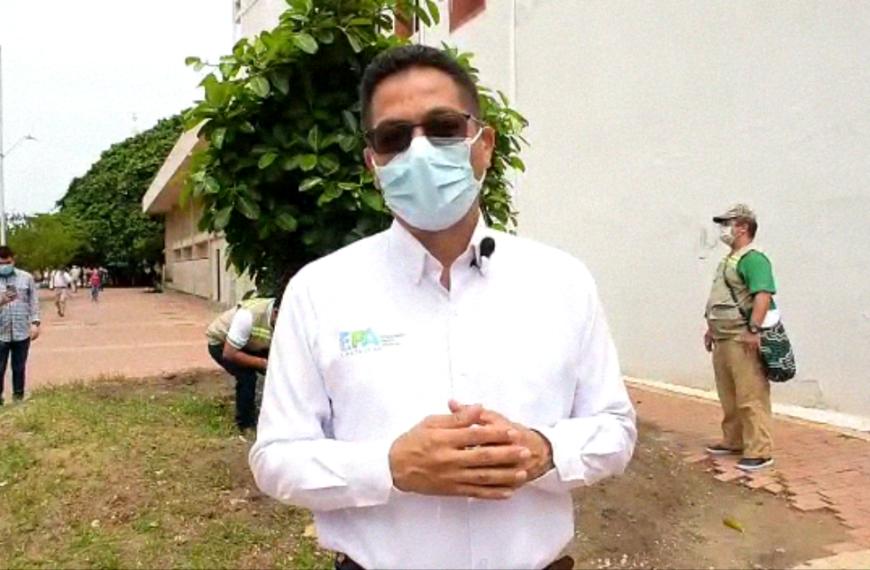 EPA CARTAGENA INSPECCIONA ESTADO DEL «PALITO DE CAUCHO», EN EL CENTRO HISTÓRICO